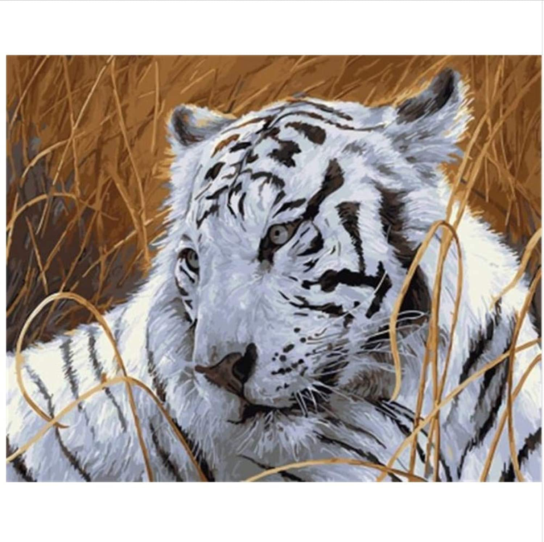 Czyyou Animal Tiger Painting Kalligraphie Diy Malen Nach Zahlen