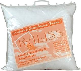 Lote de 2 almohadas 60 x 60 Cm, fabricación francesa, 500 g/m2-