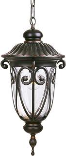 Goalplus Outdoor Pendant Light Fixture for Porch, Bronze Exterior Hanging Lantern Light Fixture with Clear Seeded Glass, 2...