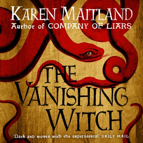 The Vanishing Witch audiobook cover art