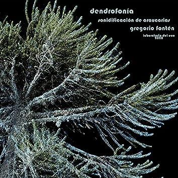 Dendrofonia 1