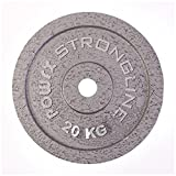 POWRX Discos Hierro Fundido 40 kg Set (2 x 20 kg) - Pesas Ideales para Mancuernas y Barras con diámetro 30 mm + PDF Workout (Plata)