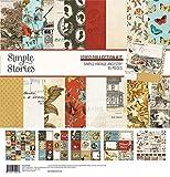 Simple Stories 14100