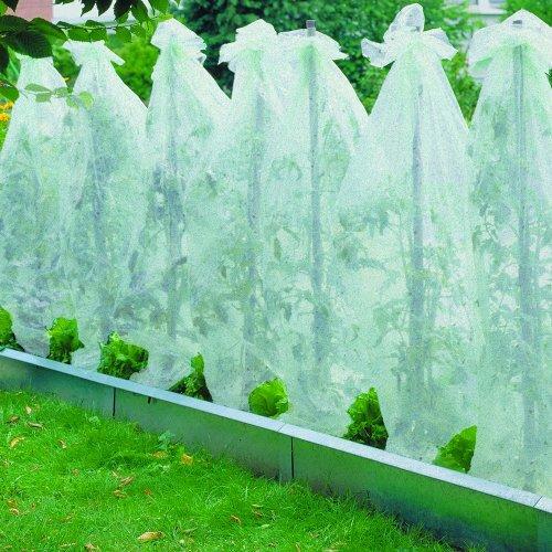 Xclou Garden Tomatenvlies, Transparent, ca. 0,8 x 5 m