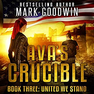 United We Stand: A Post-Apocalyptic Novel of the Coming Civil War in America audiobook cover art