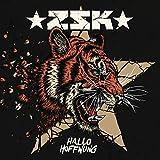 Songtexte von ZSK - Hallo Hoffnung