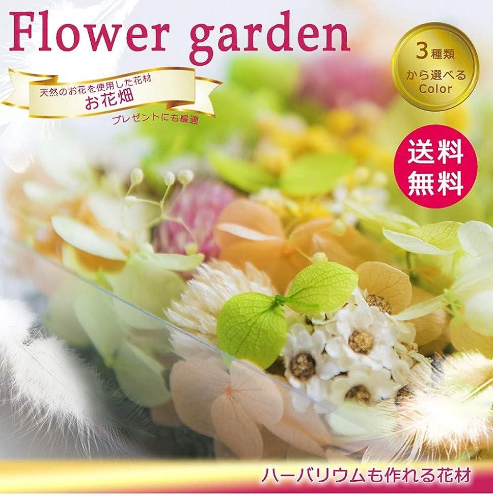 お花畑セット クリア (イエロー)