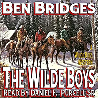 The Wilde Boys audiobook cover art
