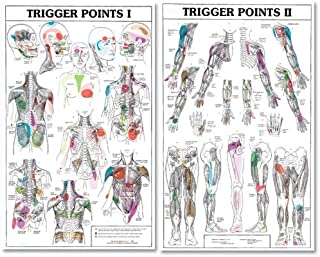 Best foot trigger points chart Reviews