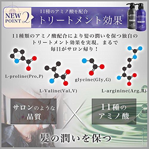 ロイド[正規品]プレミアム仕様カラーシャンプー500ml11種類のアミノ酸配合サロン仕様カラシャントリートメントシャンプーシルバー