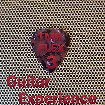 Flex 3 Guitar Experience