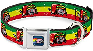 """Buckle-Down Seatbelt Buckle Dog Collar - Rasta Nyan Cat Stripe Green/Yellow/Red - 1"""" Wide - Fits 15-26"""" Neck - Large"""