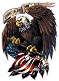 American Eagle with Flag These Colors Don't Run Large 12' Decal
