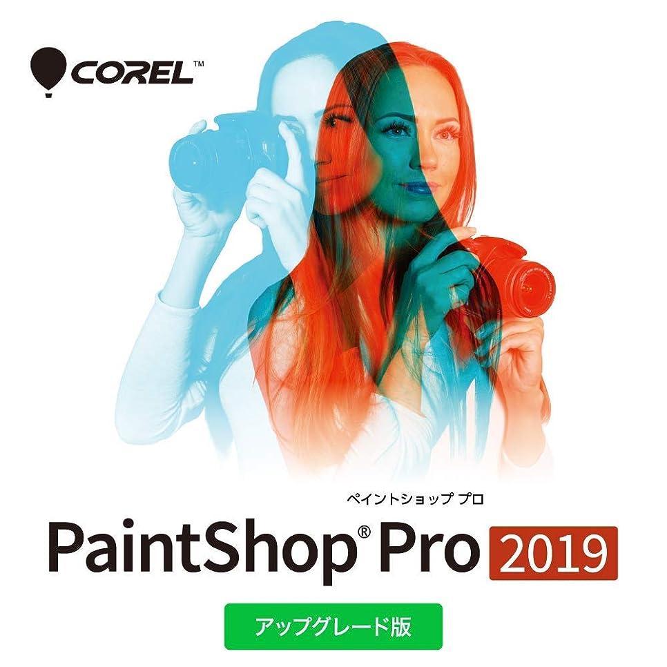 コメンテーターボイド蓮Corel PaintShop Pro 2019 アップグレード版 ダウンロード|ダウンロード版