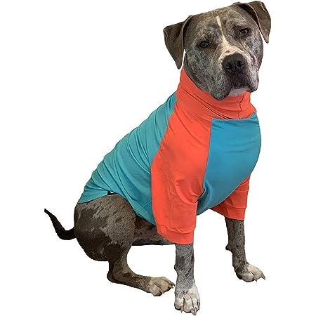Tooth and Honey UV Shirt/Pitbull Sun Shirt/Dog Rashguard/Sun Protection Shirt/UPF Dog Shirts (X-Large, Orange & Teal)