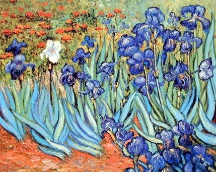 Vincent Van Gogh lirios de Flores Garden Fine Art Póster (16 x 20)