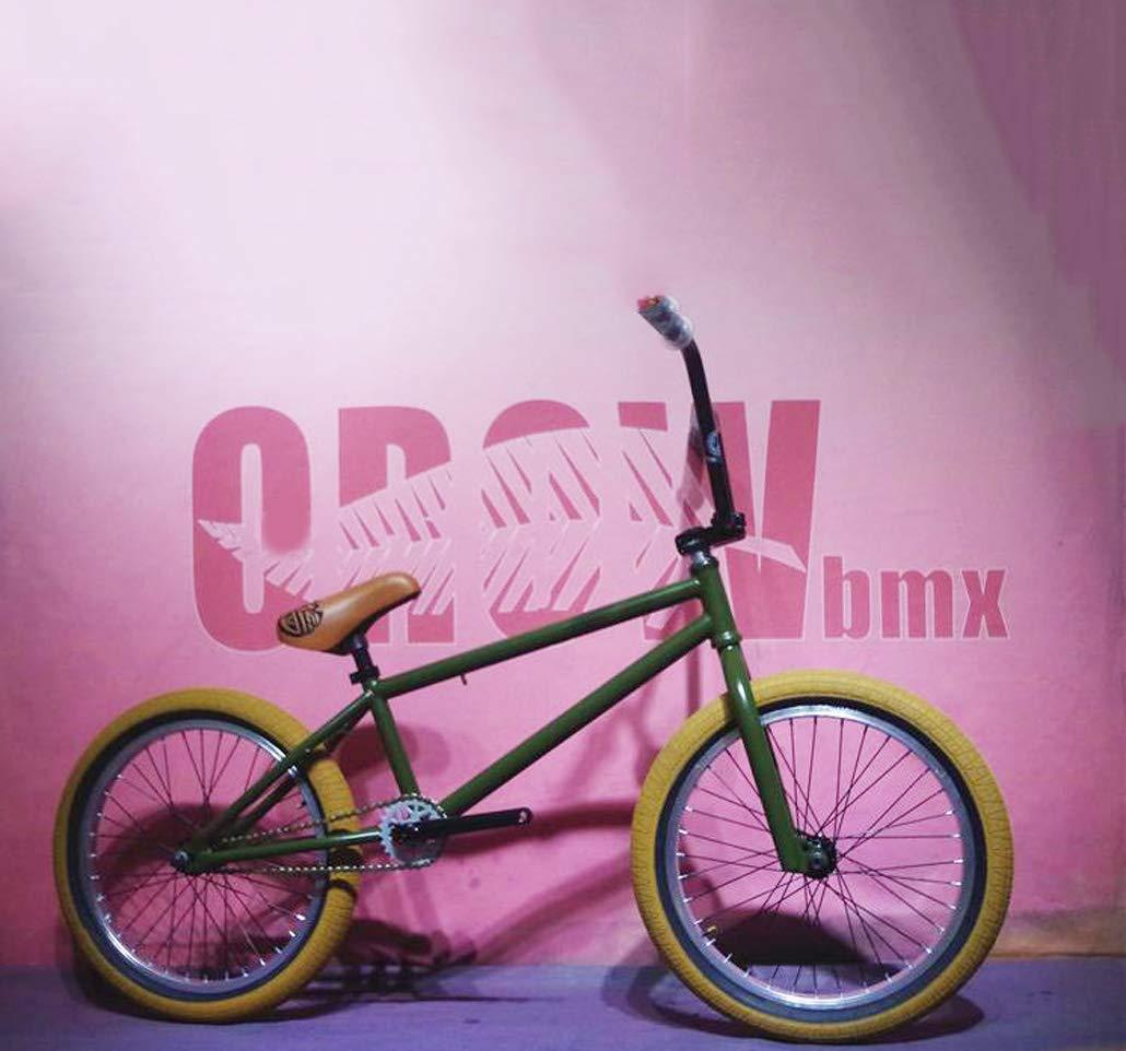 AISHFP Bicicleta BMX de Grado Profesional de 20 Pulgadas, Bicicleta de Carrera BMX de Nivel Principiante a avanzado, Adultos Hombres Mujeres niños General,B: Amazon.es: Deportes y aire libre