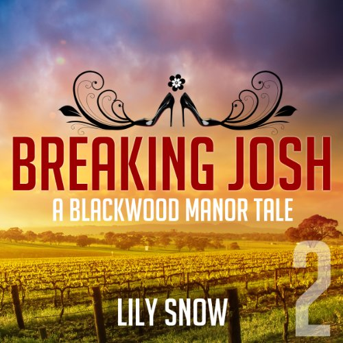 Breaking Josh 2 audiobook cover art