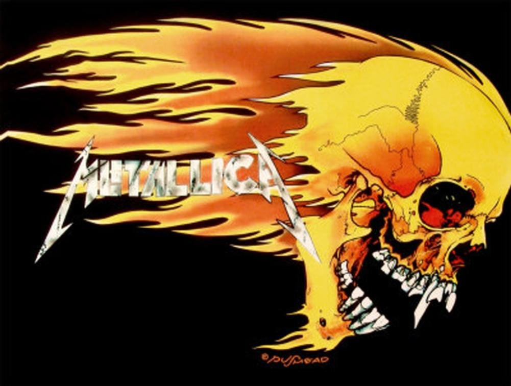 Metallica Skull & Flame 30'' x 40'' Textile/Fabric Poster
