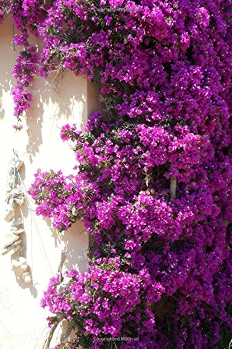 Bougainvillea Flower Journal: 150 Page Lined Notebook/Diary