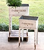 CTW Home Collection 530103 Farm Fresh Garden Stands, Set of 2, White, Metal