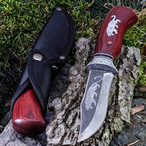 KanDar Jaguar • FESTSTEHENDE Messer JAGDMESSER • Gesamtlänge: 260mm • TM-st.