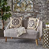 Christopher Knight Home 302027 Jasper Mid Century Modern Fabric Loveseat (Beige),