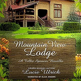 Mountain View Lodge audiobook cover art