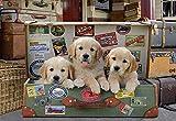 Educa Borras - Genuine Puzzles, Puzzle 500 piezas, Cachorros en el equipaje (17645)