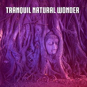 Tranquil Natural Wonder