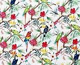 Stoff aus 100 % Baumwolle – Papageien und tropische
