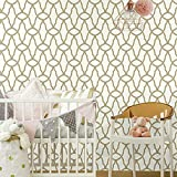 RoomMates RMK9121WP Metallic Gold Trellis Peel and Stick Wallpaper