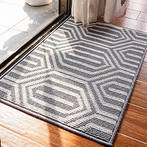 Felpudo interior antideslizante, absorbente, resistente a la suciedad, tapete para el piso para la casa, alfombras de entrada Felpudo delantero y tapete de entrada, claustro gris lavable a máquina