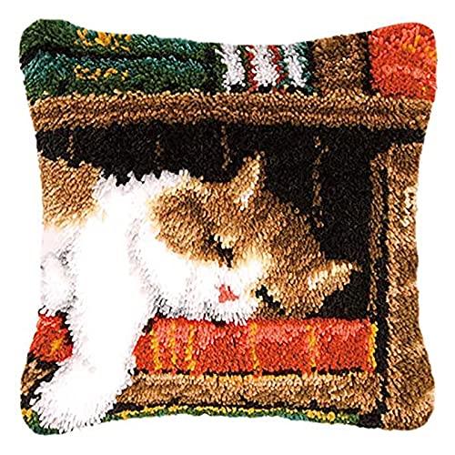 Lanxing Gancho de Cierre Kit Funda de Almohada Juegos de Bordar la Cubierta del Amortiguador for el hogar Decoración Perro Dormir 43 X 43 cm (Color : F)