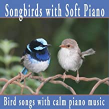 Songbirds With Soft Piano: Nature Sounds, Bird Sounds With Relaxing Piano