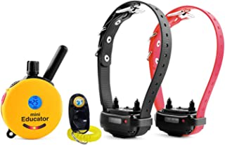 Bundle of 2 Items - E-Collar - ET-302 - Half a Mile Remote Waterproof Two Dog Trainer Mini Educator - Static, Vibration and Sound Stimulation Collar With PetsTEK Dog Training Clicker Training Kit