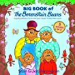 Teddy Bears Picnic, Picture Books, Berenstain Bears