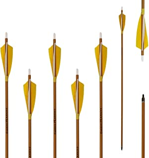 Letszhu Archery Carbon Arrows 500 Spine with Helical Real Feathers and Removable Tips for Compound Recurve Bow (6 Pack)