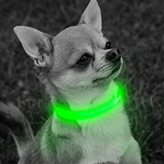 Vizbrite Led Dog Collar, XS USB Rechargeable Dog Collar Adjustable Reflective Water Resistant Flashing Nylon Collar for Puppies Small Breeds & Cats