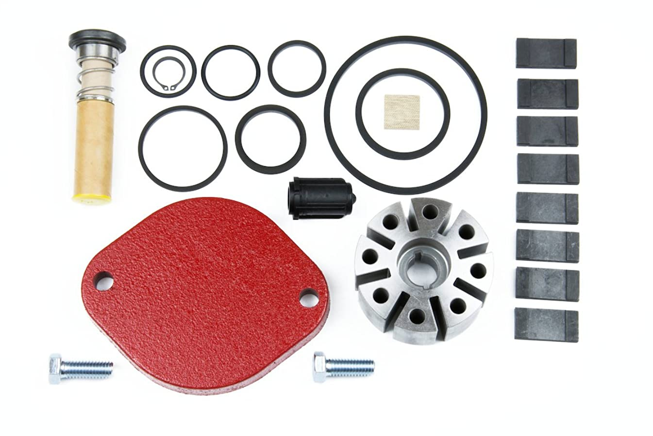 Fill-Rite 700KTF2659 Rebuild Kit for Series 700B Pumps Version Only, Carbon Vane