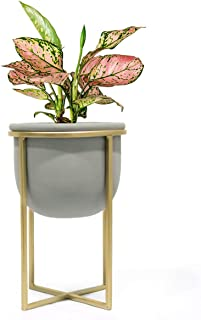 Cement Flower Pot with Stand - 6.3 Inch Tabletop Planter, Grey Herbs Orchids Cacti Succulents Pot Indoor with Gold Metal Stand