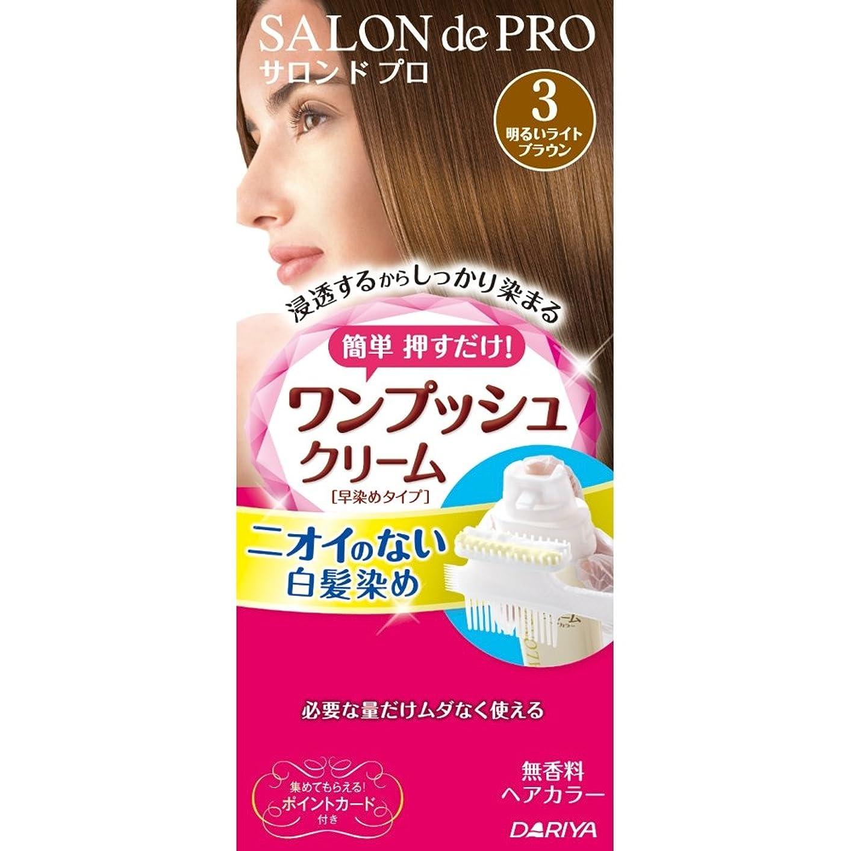 クリープパキスタンミンチサロンドプロ ワンプッシュクリームヘアカラー 3 40g+40g