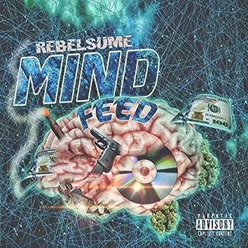 MindFeed