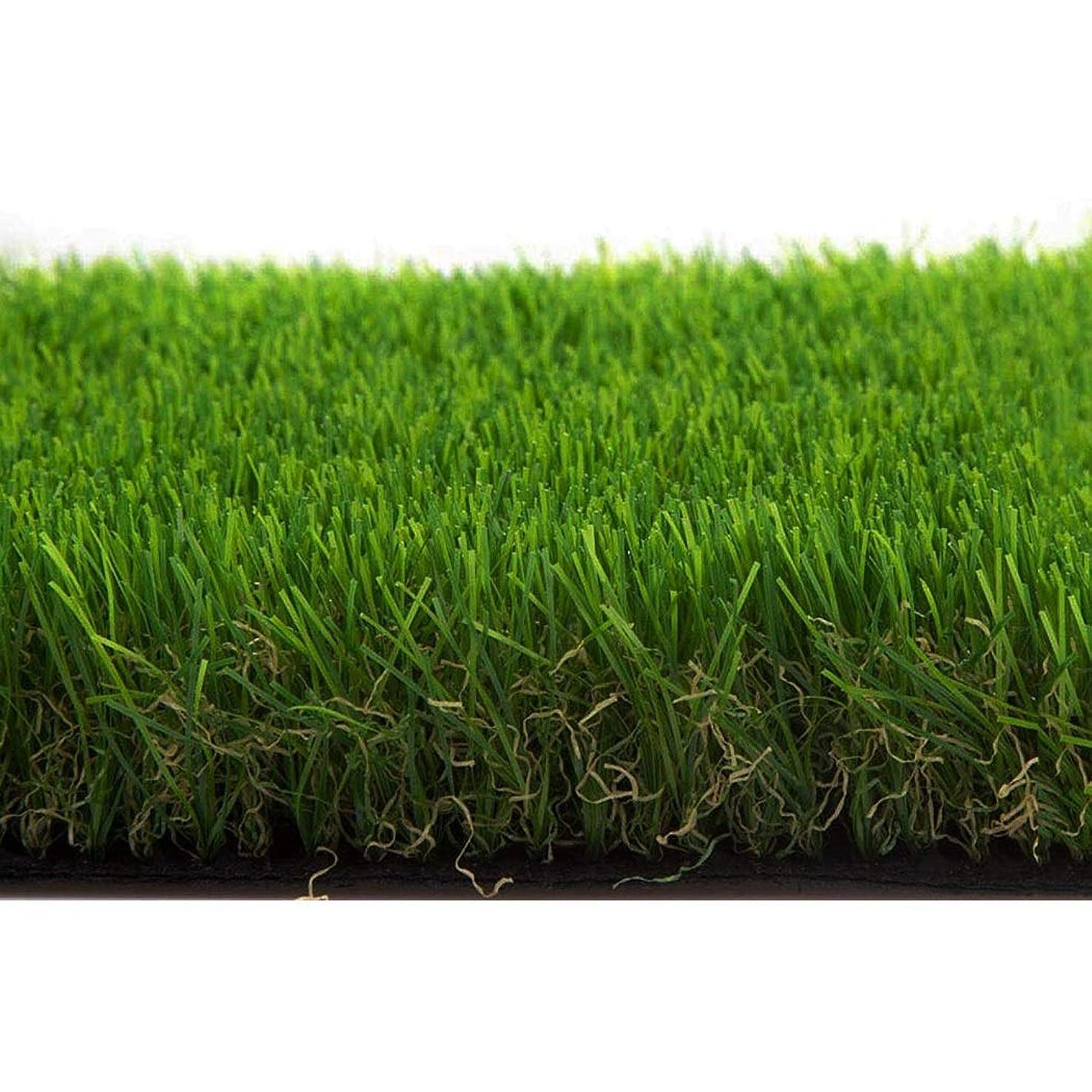 悪意アルファベットアーチイ草 畳 デラックスターフ人工芝リアルフェイクグラスアウトドアグリーン芝生ラグペット犬用芝生おしっこパッド合成グラスドアマットフェイクグラスグリーン (Color : 30mm, Size : 1mX2m)