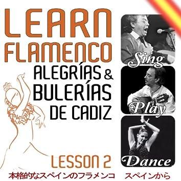 Learn Flamenco. Sing, Play And Dance Alegrías And Bulerias de Cádiz. Lesson 2