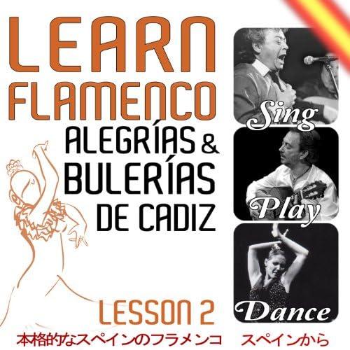 Various Flamenco Singer