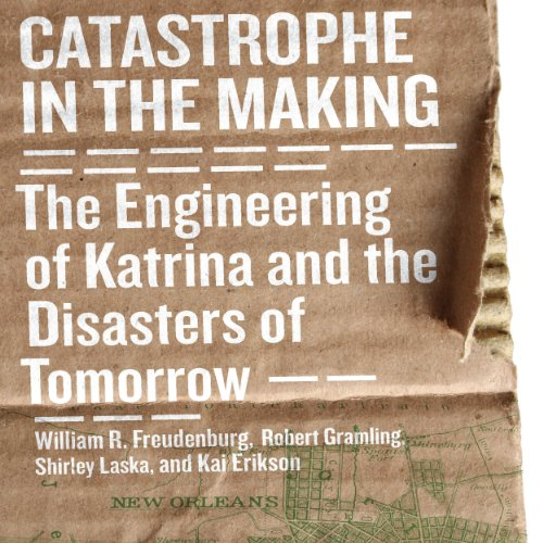Catastrophe in the Making cover art