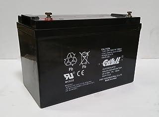 12v 100ah CA12100 AGM SLA Sealed Lead Acid Battery Replaces Weize LFP121000 / WindyNation 12v 100ah / Universal Power Grou...