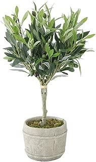 Time Concept Decor Imitation Olive Tree Plant w/Black Fruits - Large - Artificial Indoor Houseplant