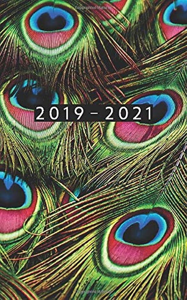 機関安定村2019 - 2021: Weekly Planner Starting June 2019 - May 2021 | 5 x 8 Dated Agenda | 24 Month Appointment Calendar | Organizer Book | Soft-Cover Peacock Feather